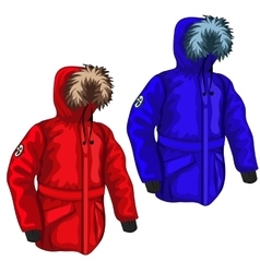 Warm down jacket for winter in different colors vector image vector image