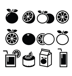 Orange icons set - food nature concept icons vector