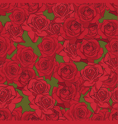 Beautiful red rose seamless pattern botanical vector