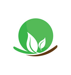circle leaf ecology logo image vector image vector image