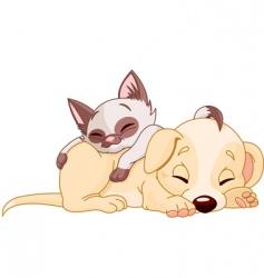 Puppy and kitten vector