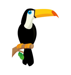 Toucan bird icon vector