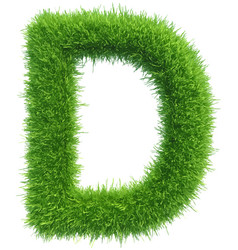 Capital letter d from grass on white vector