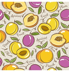 Pattern with apricot plum and peach vector