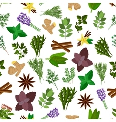 Fresh herb spice condiment seamless pattern vector image