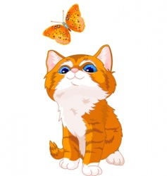 kitten looking at butterfly vector image vector image