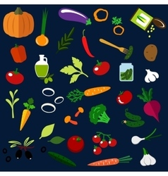Natural ripe vegetables flat icons vector