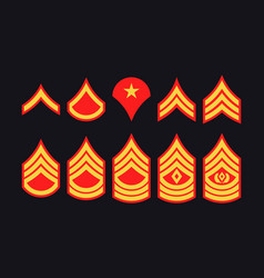 Military ranks stripes and chevrons set army vector