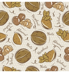 Pattern with almond hazelnut and walnut vector