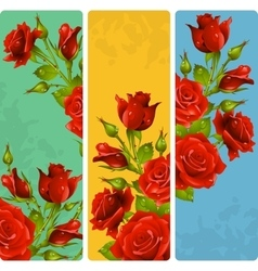 Red rose frames set vector
