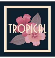 Tropical icon design vector
