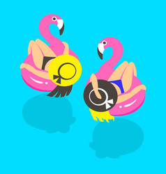girls on an inflatable pink flamingo in summer of vector image