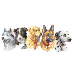 set of big dog breeds vector image vector image
