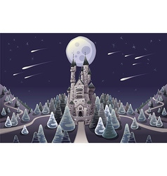 Panorama with medieval castle in the night vector