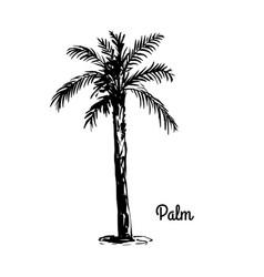 sketch tree vector image