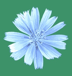 Light blue flower vector
