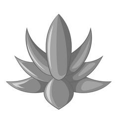 Big agave icon monochrome vector