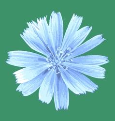 Light blue flower vector