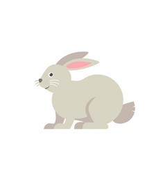 rabbit flat isolated on white vector image