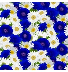Seamless pattern with flowers camomile vector image