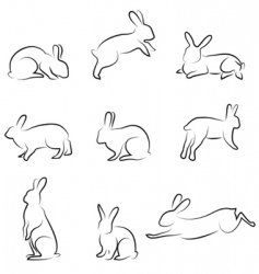 Rabbit drawing set vector