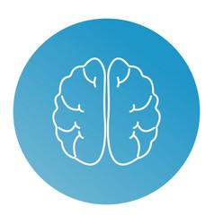 line brain vector image