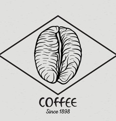 Vintage coffee bean vector