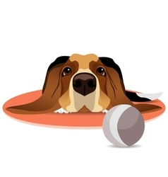 Sad basset hound on circle mat and ball vector