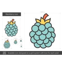 Blackberry line icon vector