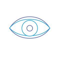 eye human anaomy to optical graphic vector image vector image