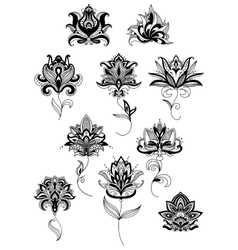 Outline paisley flowers with lush blooms vector