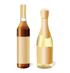 Champagne and cognac vector