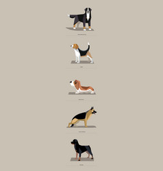 Dog breeds in minimalist style vector