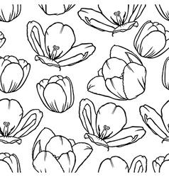 tulip contour pattern vector image