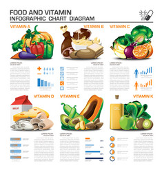Food and vitamin infographic chart diagram vector