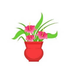 Home hibiscus flower in the flowerpot flower shop vector