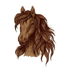 Brown running mustang portrait vector