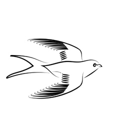 Swallow vector