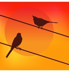 Two birds on the background of the sunset vector