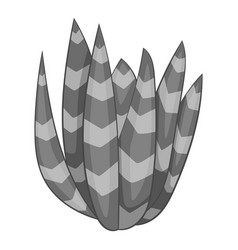 Spotted agave icon monochrome vector