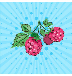 sweet berries of raspberries on a green branch on vector image vector image