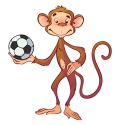 Monkey with a soccer ball vector