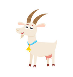 farm goat with big eyes and horns wearing bell vector image