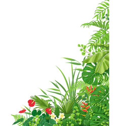 Side corner border with tropical plants vector