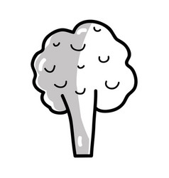 Silhouette health broccoli vegetable icon vector