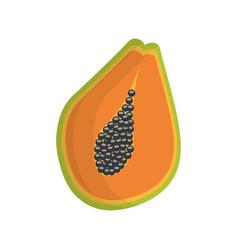 Slice papaya fruit healthy vector