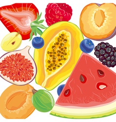 Mix berries and tropical fruits vector image