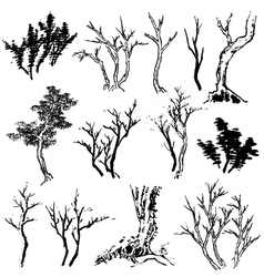 Tree drawing vector