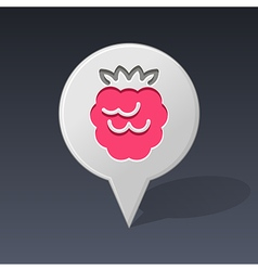 Raspberry pin map icon Fruit vector image vector image