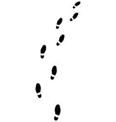 trail of shoes prints vector image vector image